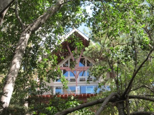 Bill's Cabin